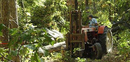 Pulling log