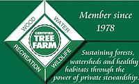 American Tree Farm